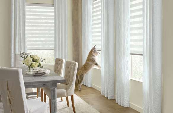 Custom drapes and blinds with no cords for pet safetly. Dog looking out window.